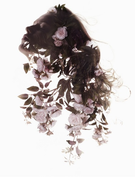 Цветы · S?lve Sundsb?