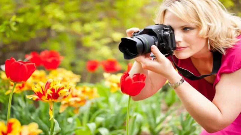 Где и что нужно для обучения в школе фотографов